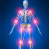 Стави, кости и гръбначен стълб